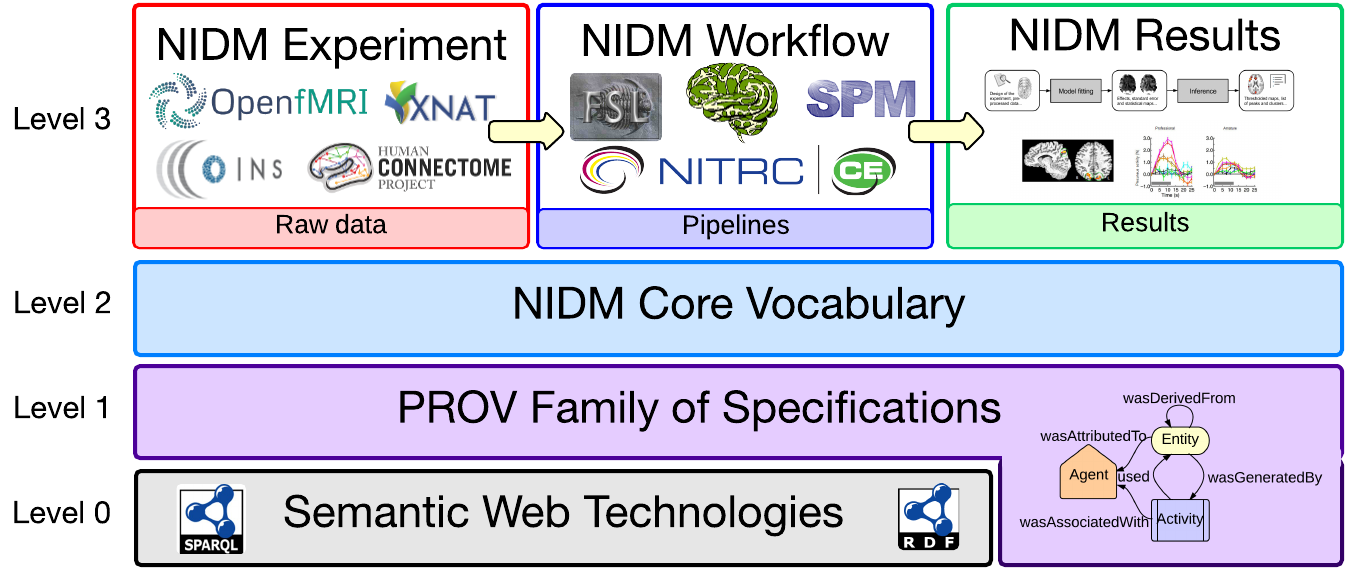 neuroimaging data